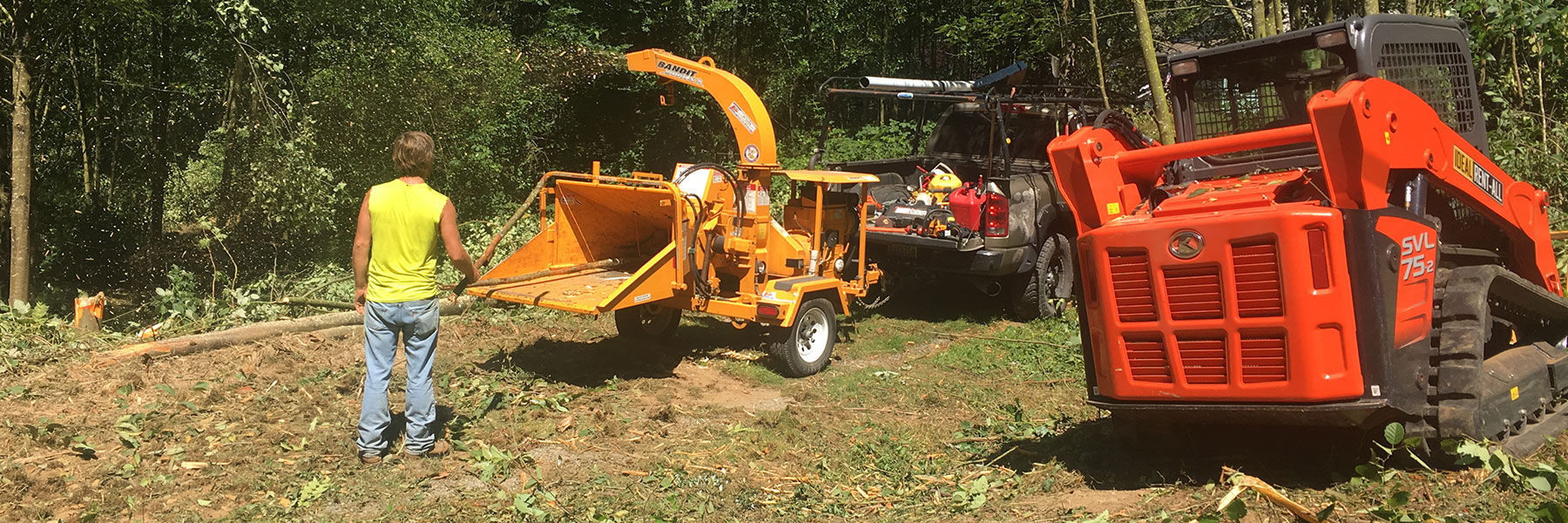 Land Clearing Services in Bellingham